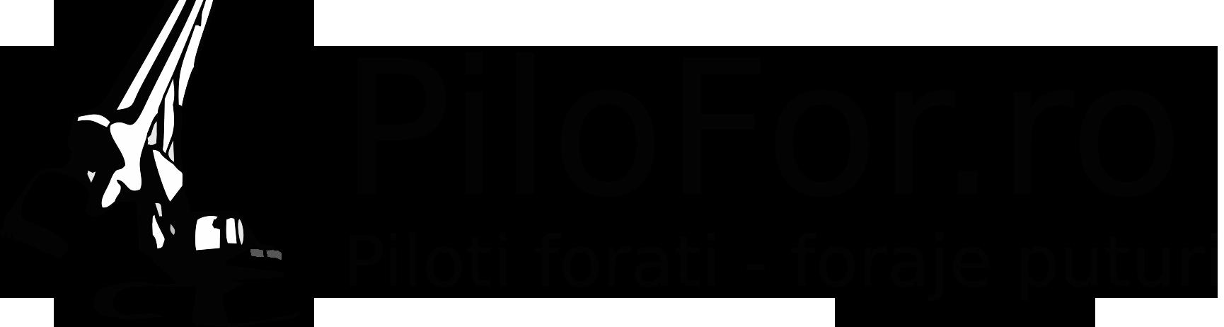 Pilofor
